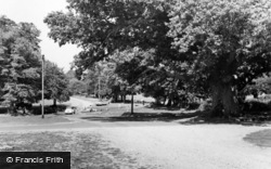 Moyles Court Oak And Ford c.1965, Linwood