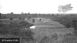 View On Golf Links 1932, Liphook