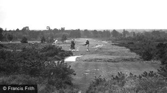 Liphook, view on Golf Links 1932