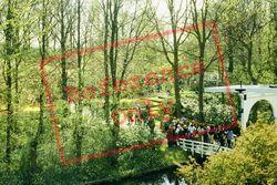 Bridge In Keukenhof Gardens 1999, Lisse