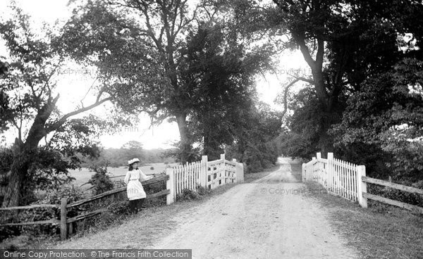 Photo of Little Baddow, Grace's Walk 1906