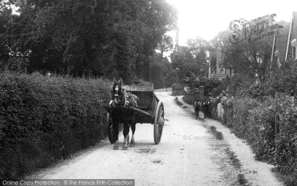 Little Bookham, Horse and Cart 1904