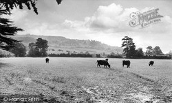 Little Comberton, Bredon Hill c.1955