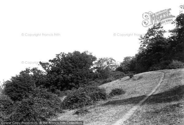 Photo of Little Hallingbury, Wallbury Dells 1899