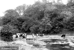 Little Hereford, River Teme 1898