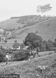 Llanarmon Dyffryn Ceiriog, A Farm Horse c.1960