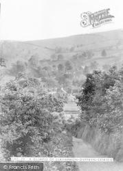 Llanarmon Dyffryn Ceiriog, A Glimpse Of The Village c.1950