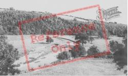 Castle Fields c.1965, Llandovery