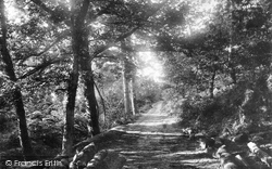 Llanelli, Entrance To Swiss Valley 1896