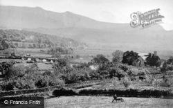 The Bridge And Cader Range c.1875, Llanelltyd