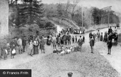 The Anglesey Hunt c.1900, Llanfair Pwllgwyngyll