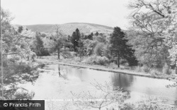 Llangammarch Wells, The Lake And Lake Hotel Grounds c.1960