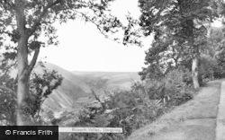 Rhiwarth Valley c.1960, Llangynog