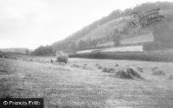 Llansantffraid-Ym-Mechain, Harvest, Foel Hill c.1955
