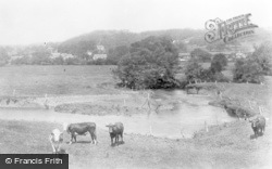 Llansantffraid-Ym-Mechain, View From River Cain c.1955