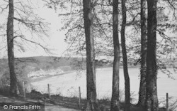 Llansteffan, The Bay From The Sticks c.1955
