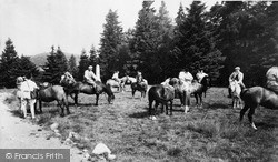 Pony Trekking Association, The Ponies c.1960, Llanwrtyd Wells