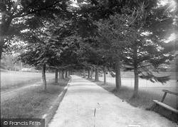 The Avenue c.1935, Llanwrtyd Wells