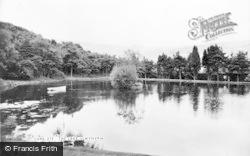 The Lake c.1955, Llwynypia