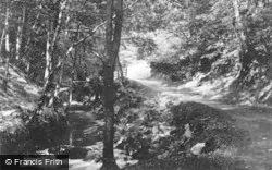 Llyfnant Valley, Near Glandyfi c.1935