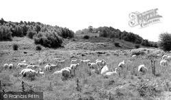 Llynclys, A View On Llynclys Hill c.1960