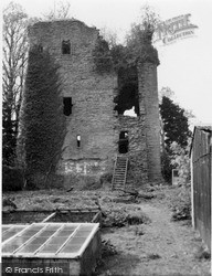 Loch Lomond, Mains Castle 1960