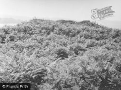Loch Nan Uamh, Ard Ghaunsgoik Vitrified Fort 1957