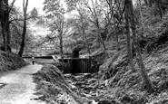 Loftus, Woods c1960
