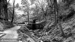 Loftus, Woods c.1960