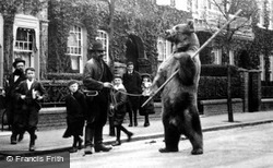 Dancing Bear 1895, London