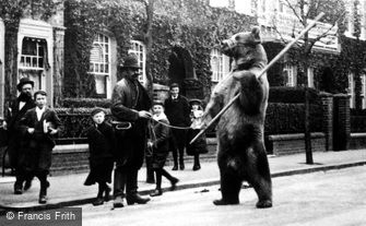 London, Dancing Bear 1895