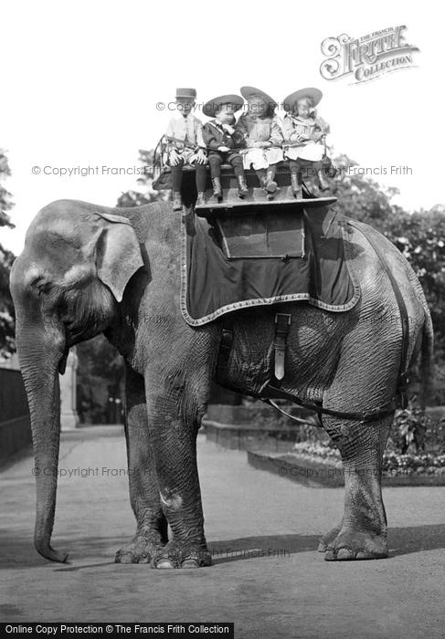 Photo of London Zoological Gardens, Elephant Ride 1913