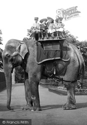 London Zoological Gardens, Elephant Ride 1913