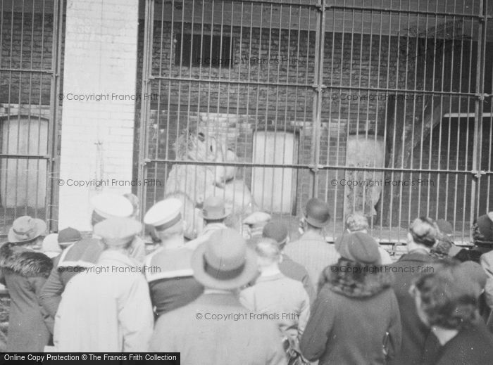 Photo of London Zoological Gardens, On Lookers c.1935