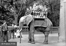 London Zoological Gardens, The Elephant 1913, London Zoo