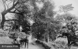 Lostwithiel, On The Road To Restormel House 1906
