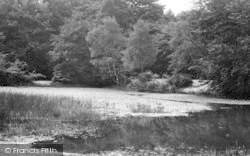 Loughton, Baldwins Hill Pond c.1955