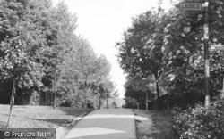 Loughton, Brook Patch c.1955