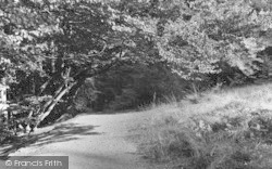 Loughton, Epping Forest c.1955