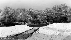 Loughton, Winter In Epping Forest c.1960