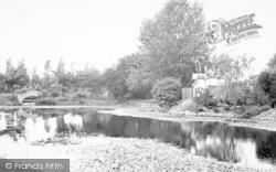 Lower Weare, Ambleside Tea Gardens c.1955