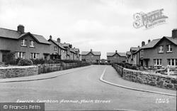Lambton Avenue c.1955, Lowick