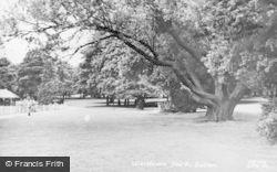 Luton, Wardown Park c.1955