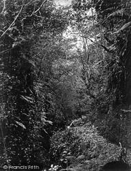 Lydford, Fairy Glen c.1874