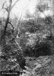 Lydford, Gorge 1906