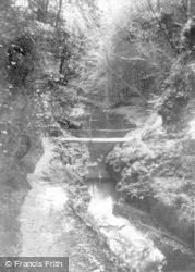 Lydford, Gorge c.1930