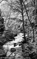 Lydford, Gorge c.1960