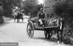 Lydford, Horse And Cart 1906