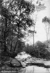 Lydford, River Lyd Near The Cascade 1890