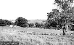 Lympne, The Marshes c.1955